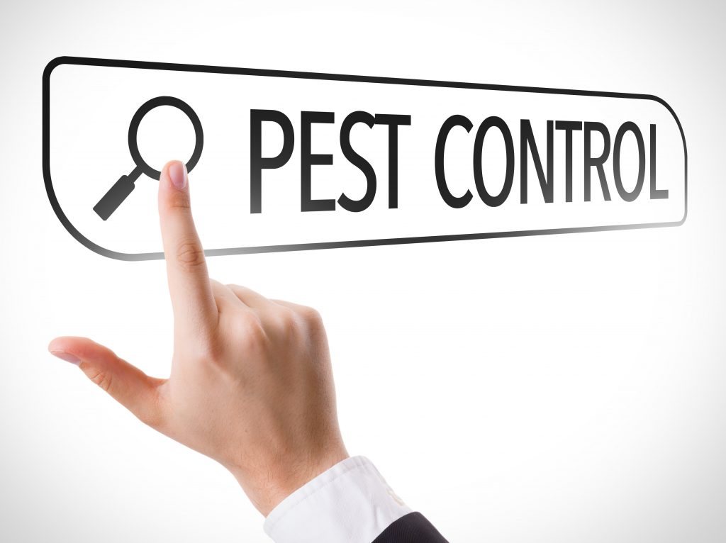 Pest Control Expert Witness Reports
